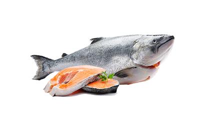 紐西蘭國王鮭(特大半尾/分切) 3.1kg